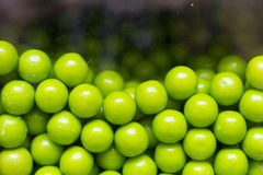 Gumballs Candy Machine. Close up of green candy gum balls in candy machine Royalty Free Stock Image