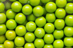 Gumballs Candy Machine. Close up of green candy gum balls in candy machine Royalty Free Stock Photo