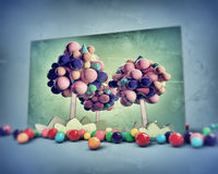 Gumballs trees. In old grunge photo Stock Photo