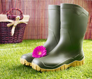 Gumboots with a pink gerbera daisy Stock Images