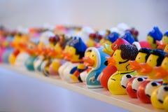 Gummi duckar på en hylla Royaltyfria Bilder