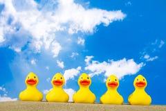 Gummi duckar på stranden Arkivbild
