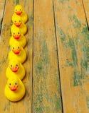 Gummi duckar på trä Fotografering för Bildbyråer