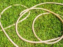 Gummiband på gräs Royaltyfri Bild