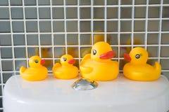 Gummiente im Badezimmer Stockfotografie