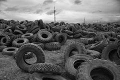gummihjul Royaltyfri Fotografi