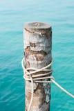 Gummihjul och repet som binds till en kokosnöt som förtöjer masten, sänder Royaltyfri Fotografi