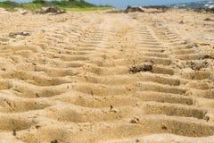 Gummihjulspår bildar en modell på en sandig strand arkivfoto