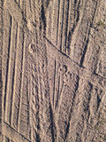 Gummihjultryck på sandbakgrund Royaltyfri Bild
