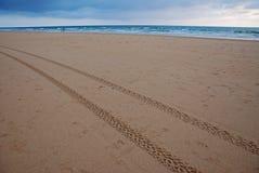 Gummihjultryck på stranden Royaltyfri Bild