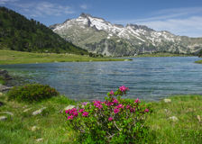 Gummilacka av Aumar, vatten och berg i det naturligt parkerar fotografering för bildbyråer