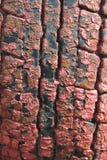 Gummireifen der ungewöhnlichen Beschaffenheit gemalt in der roten Farbe Lizenzfreies Stockfoto