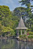 Gummistövel Nya Zeeland - mars 2, 2016: Anddammet på Wellington Botanic Garden, Nya Zeeland arkivbild
