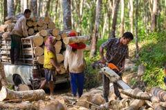 Gummiträdskogsarbetare royaltyfri foto