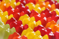 Gummy bear. Group of colorful gummy bears stock photos