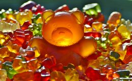 Gummy bear candies Royalty Free Stock Image