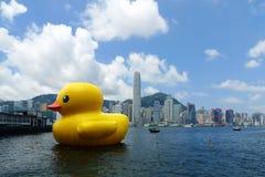 Gumowa kaczka unosi się w Hong Kong - krajobraz Zdjęcie Stock