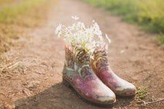 Gumowi buty Zdjęcie Stock