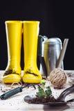 Gumowi buty i ogrodowi narzędzia Fotografia Stock