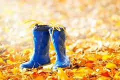 Gumowi buty na jesień liściach Obraz Stock