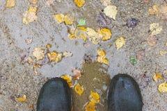Gumowi buty w kałuży z jesień liśćmi, odgórny widok Obrazy Royalty Free