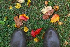 Gumowi buty w trawie z jesień liśćmi, odgórny widok Zdjęcia Stock