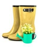 Gumowi buty z wiosną kwitną w podlewanie puszce Fotografia Royalty Free