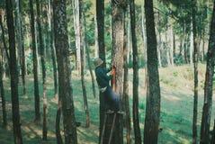 Gumowi rolnicy zdjęcie stock