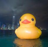 Gumowy kaczka projekt HK Objeżdża Zdjęcia Stock
