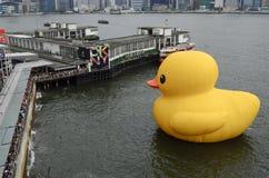 Gumowy kaczka projekt w Hong Kong obrazy stock