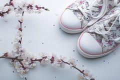 Gumshoes femeninos en blanco Fotografía de archivo libre de regalías