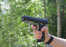 Gun Royalty Free Stock Photo