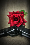 Gun And Rose. Royalty Free Stock Photos