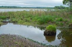 Gun Club Lake and Mud Flats Royalty Free Stock Images