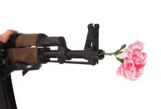 Gun and flower Stock Images