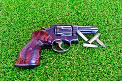 The gun on the grass. The guns on the grass with the bullet Royalty Free Stock Photos