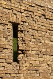 Gun loophole in the brick wall of the fortification. Of the nineteenth century The Kiev Fortress Stock Images