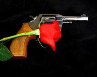 Gun with a red rose. Official police .38 Special revolver with a red rose draped across the grip, isolated on a black background Royalty Free Stock Image