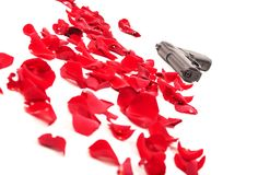 Gun between the rose petals Stock Image