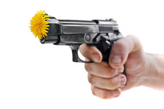 Gun's & flowers Royalty Free Stock Images