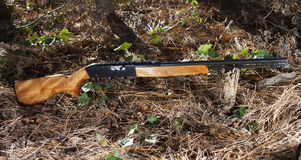 Gun in the woods Royalty Free Stock Photos