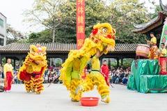 GUNAGDONG, CHINA - 28 Nov. 2015: Lion Dance in Foshan Voorouderlijk T Stock Foto