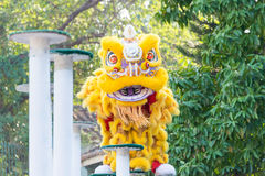 GUNAGDONG, CHINA - 27 Nov. 2015: Lion Dance in Wong Fei Hung Lion Stock Foto's