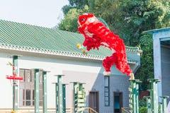 GUNAGDONG, CHINA - 27 Nov. 2015: Lion Dance in Wong Fei Hung Lion Royalty-vrije Stock Afbeeldingen