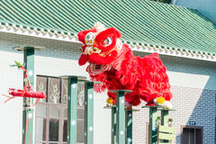 GUNAGDONG KINA - November 27 2015: Lion Dance på Wong Fei Hung Lion Arkivfoto