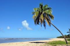 Free Gunga Beach Stock Images - 20612434