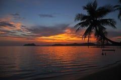 Gunga- eller vaggahängning på härlig solnedgång för kokospalm på kohMak-stranden Trad Thailand arkivbild