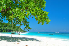 Gunga på den vita stranden med det blåa havet och blå himmel Royaltyfria Foton