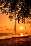 Gunga på stranden Arkivfoto