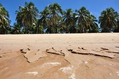 Gunga Strand Stockbilder